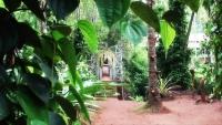 Euphoria Spice Garden in Matale