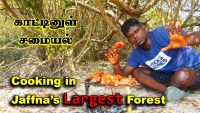 Cooking in Jaffna's biggest Ponnalai forest vlog