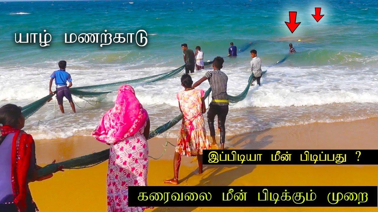 Jaffna pointpedro manalkaadu beach and fishing method in srilanka